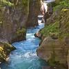 092 Avalanche Creek_0388