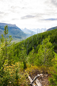 Mountain Top View into a Cloudy Valley of Glacier National Park