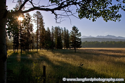 The sun rises and illuminates a large meadow in Western Glacier.  There are many places like this to be seen.