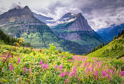 Going To The Sun Road (3)