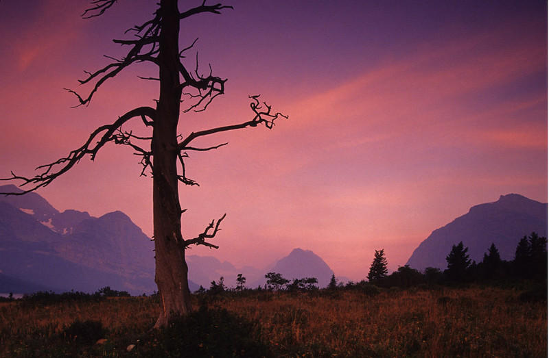 First Light - Glacier National Park, Montana - John Hewitt- July 2003