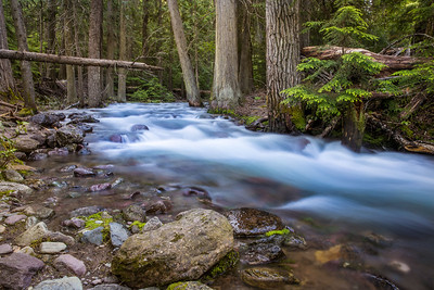 Jackson Creek 2