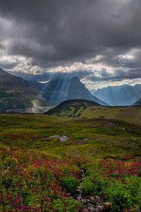 God Rays Over Logan Pass