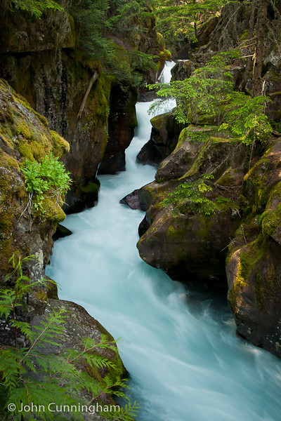 Avalanche Creek Gorge - Glacier National Park, Montana - John Cunningham - July-2012