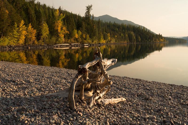 Driftwood along McDonald Lake, Sunset