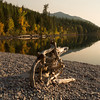 Driftwood along McDonald Lake, Sunset
