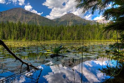 Glacier - John's Lake