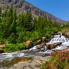 Glacier - Lunch Creek