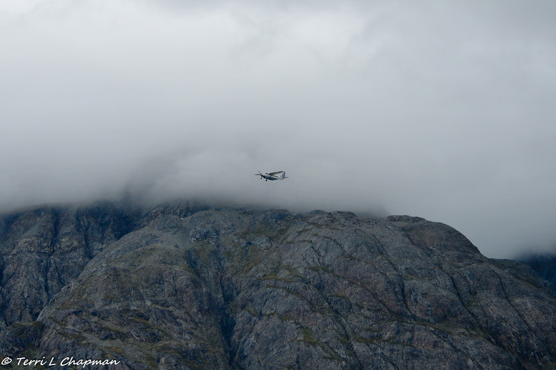 A small plane flying over the glaciers. The only way to see the glaciers is by ship or plane.