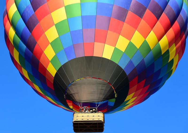 Balloon Lady