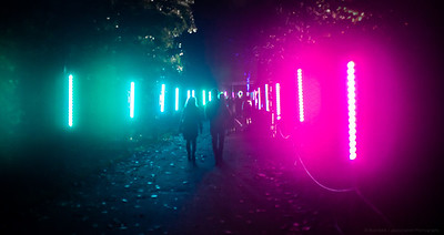 Walking the Neon Road