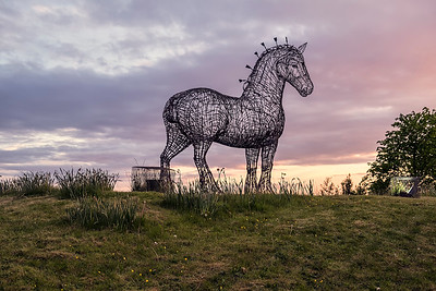 Heavy Horse by Andy Scott