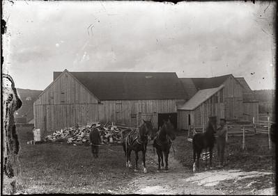Farm-5041