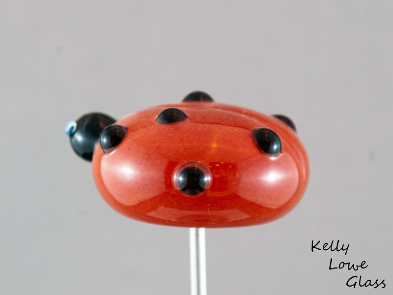 Ladybug - Picture 2/2:  A side view of the dotted madame.