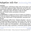 "Kritter Adoption Form: Pengueluga Sample  An optional part of the Kritter adoption process is to... well, adopt them rather than merely purchase them. For those who choose to go that route, we have here an example of the adoption sheet you can fill out with your new found friend's name (this sample here is for a Pengueluga named ""Swimmity Pete""). Included is a list of all the information given about your Kritter, and a hand written message from the grand adoptioneer herself.   <i><a href=""/AvailablePieces/Kritters/"">Click here to see our current batch of available Kritters</a></i>"