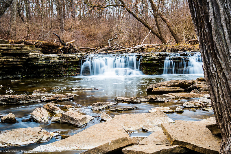 Waterfall Glen Forest Preserve
