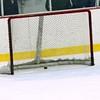 Empty net goal !