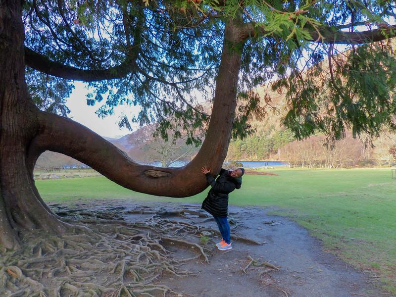 Glendalough Walks
