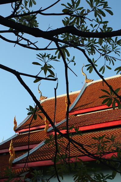 A detail of the multi-tiered roof of the temple's larger assembly hall is seen here. The finials at the apexes of the bargeboards are characteristic elements of Thai temple and royal architecture. Called <i>cho fa,</i> they are often suggestive of highly stylized birdlike forms.