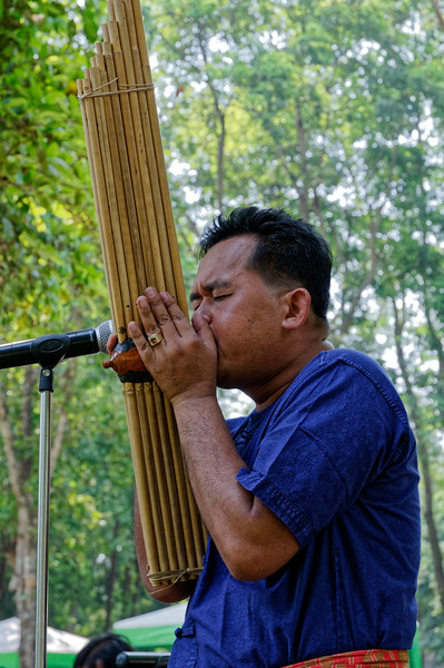 The <i>kaen</i> on which this musician is performing is made from 16 bamboo tubes and is capable of producing five different pentatonic, or five-tone, modes. Its sound is not unlike that of an accordion.