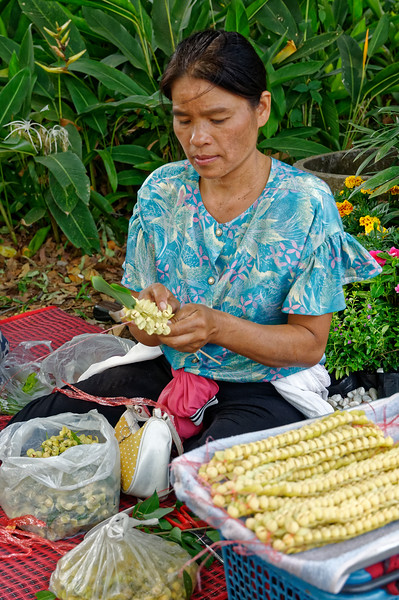 Making leis with the  aromatic blossoms of the lamduan tree