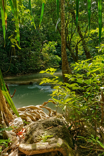 A view from within Erawan National Park