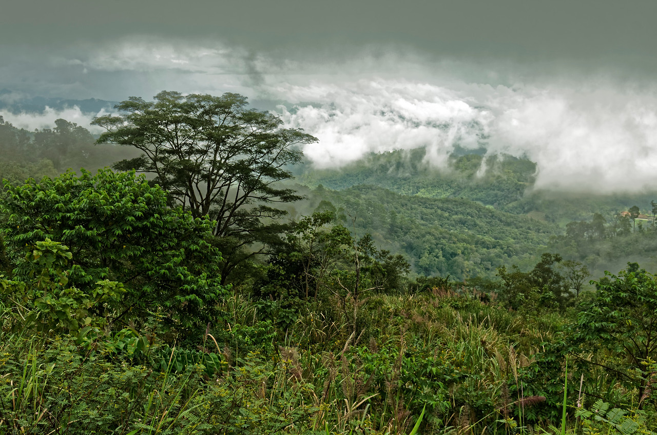 View among the clouds, between Chiang Mai and Pai