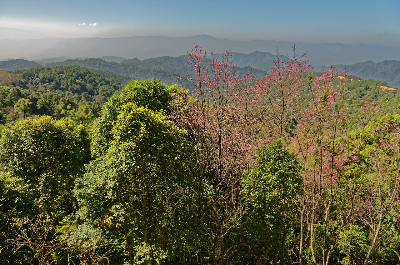 Another view from Doi Chiang Dao
