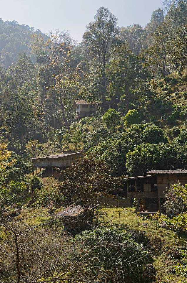 Dwellings on the slopes of the mountain at Chiang Dao