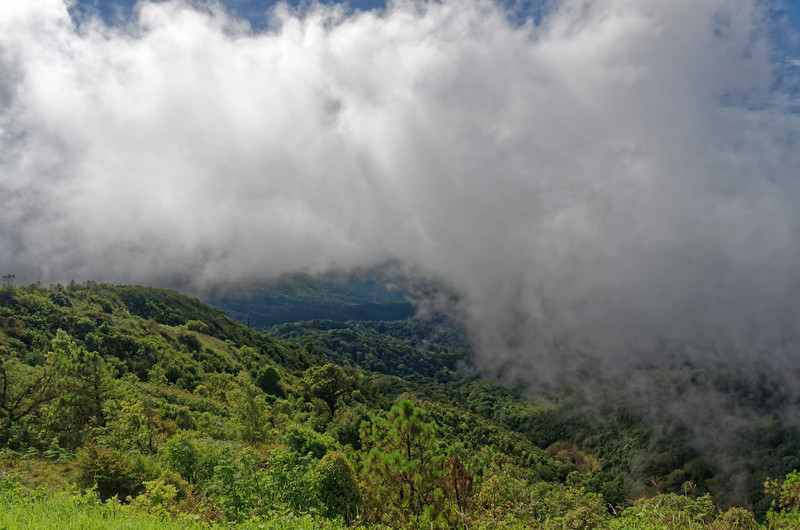 A view in the clouds from the top of Doi Inthanon, Thailand's highest mountain