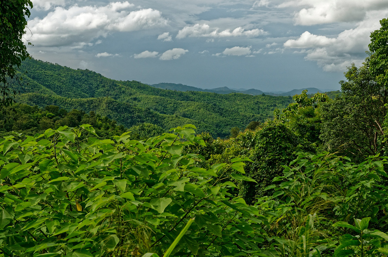 Rolling hillsides in Loei Province, northern Isaan