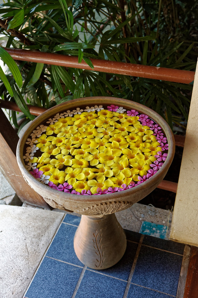 Flowers to greet visitors at a hotel on the Mekong
