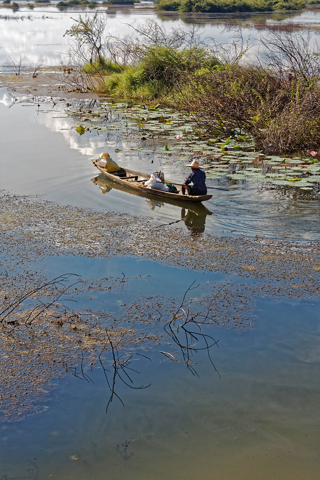 A farmer takes to his boat to traverse flooded fields during the rainy season at Rasi Salai, northeast Thailand.