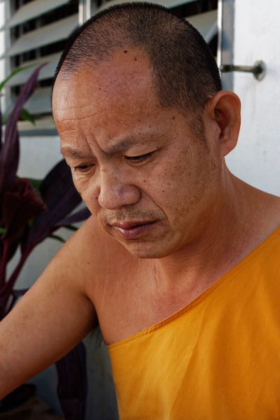 """""""Jack,"""" a monk at Wat Sai Moon Muang, Chiang Mai"""