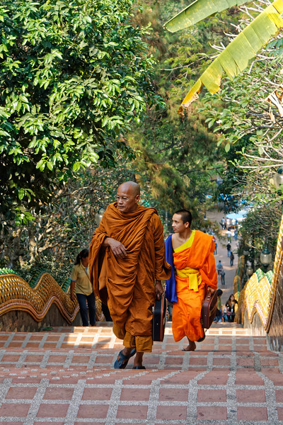Ascending the 300 steps at the entrance to Wat Phra Boromathat Doi Suthep, Chiang Mai