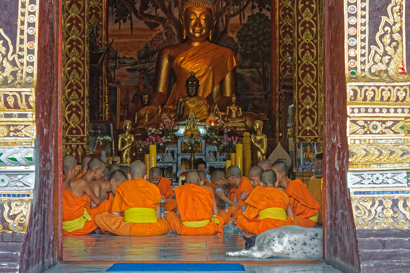 Breakfast time for a group of young monks at Wat Dab Phai, Chiang Mai. Monks may eat only two meals a day, with no food allowed after noon.