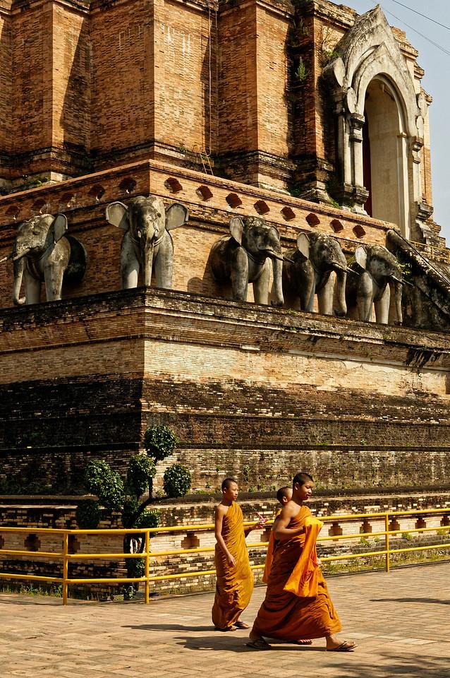 Young novices at Wat Chedi Luang, Chiang Mai