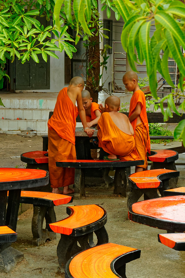 Little monks taking a break from their studies and chores. Wat Jong Soong, near Mae Hong Song in Thailand's far north