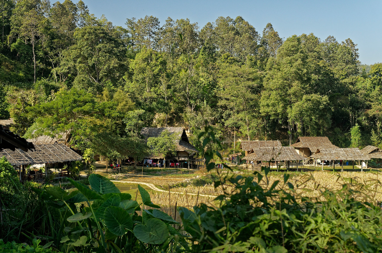 Hill tribe village, Mae Sa Valley. The rice field awaits the rainy season for a new planting.
