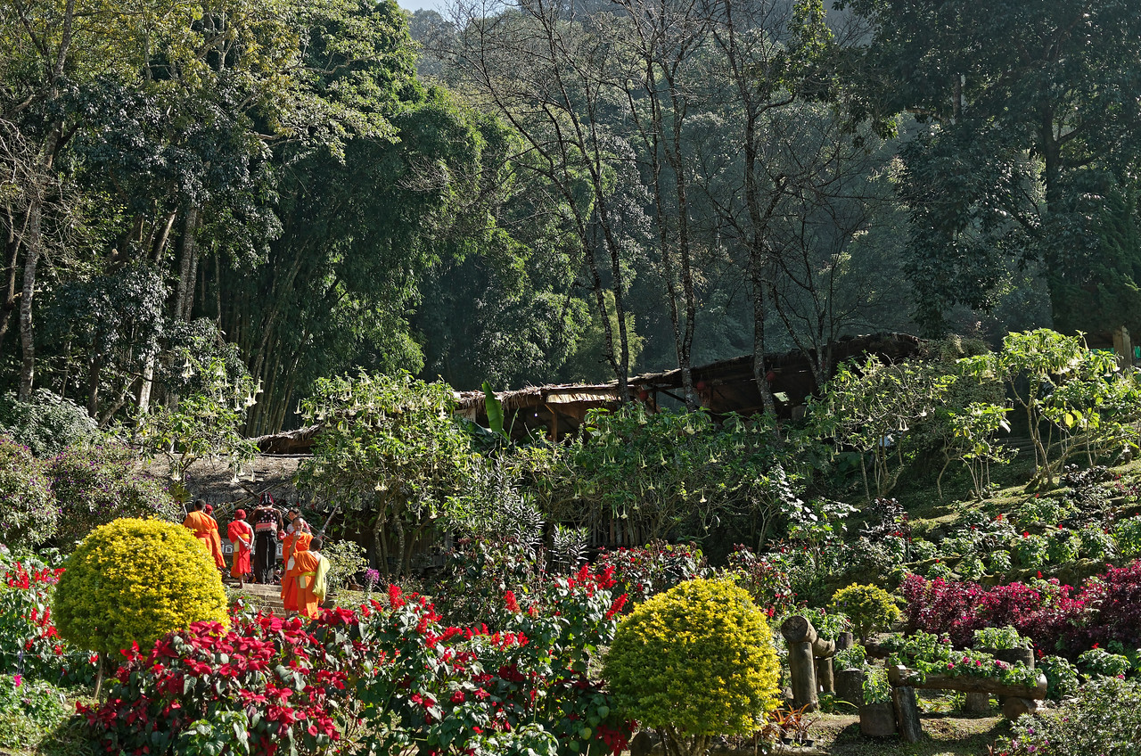 Another view of the gardens at Doi Pui, with a group of visiting monks