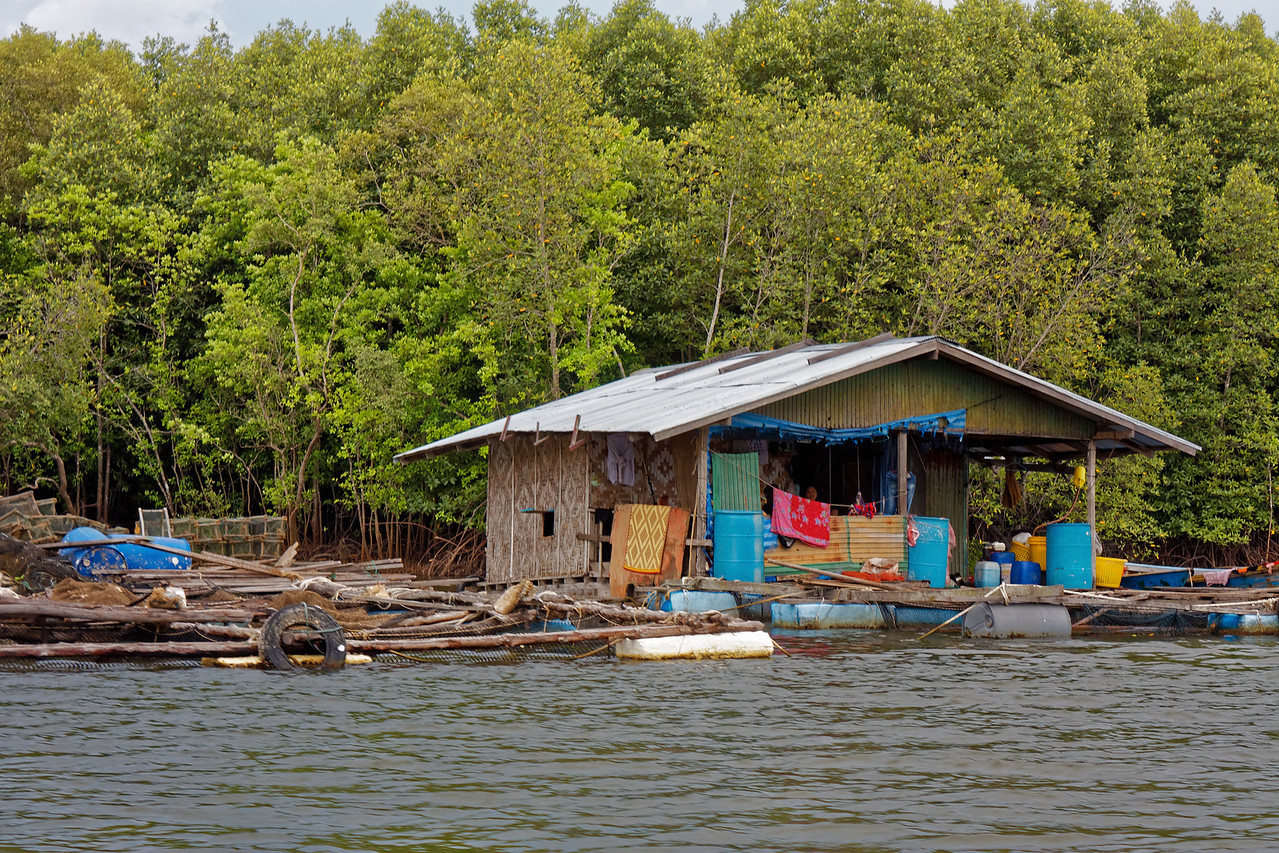 Floating home on the mangrove-lined river at Krabi, southern Thailand