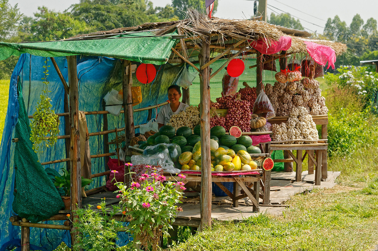 Roadside stand with garlic and watermelons, Sisaket Province