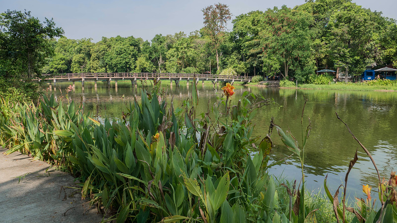 The park draws its water from two streams, Huai Poon Yai and Huai Poon Noi, which flow together before entering the park.