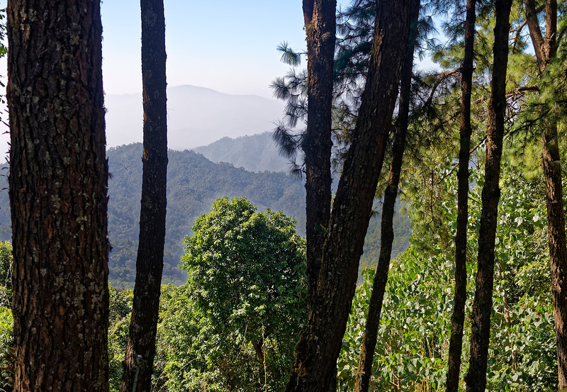 Forested mountainsides above Chiang Dao, northern Thailand