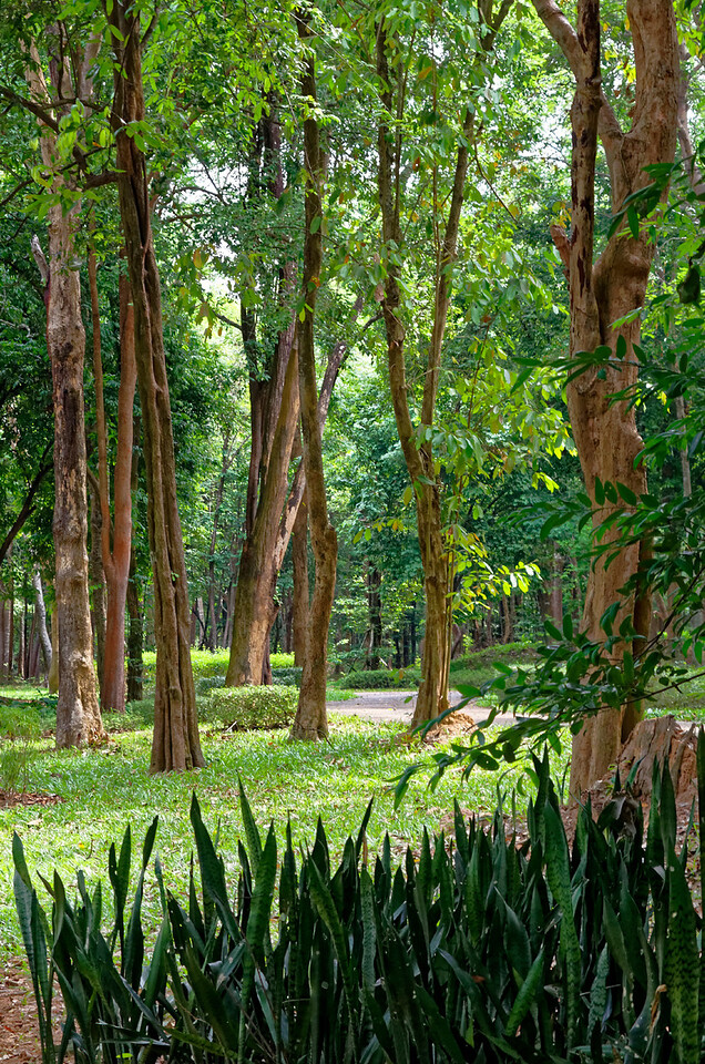 Somdet Park, Sisaket, southern Isaan