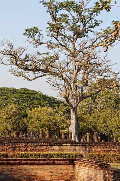 At Wat Si Sawai, Sukhothai