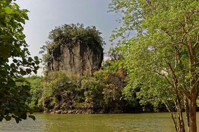 Limestone cliff and forest growth at Krabi, southern Thailand