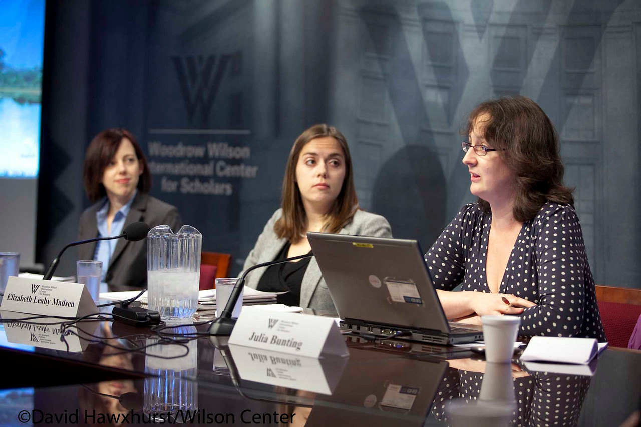 Expanding Access to Essential Maternal Health Commodities<br /> <br /> Speaker(s): Melodie Holden, Elizabeth Leahy Madsen