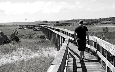 Hamptons View of a Long Goodbye