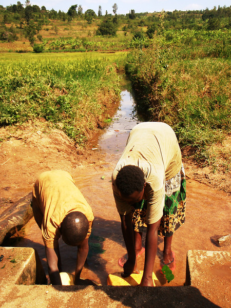 """Collection of Surface Water in Rural Rwanda"""